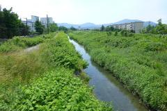 七里半街道を海津から敦賀まで歩...